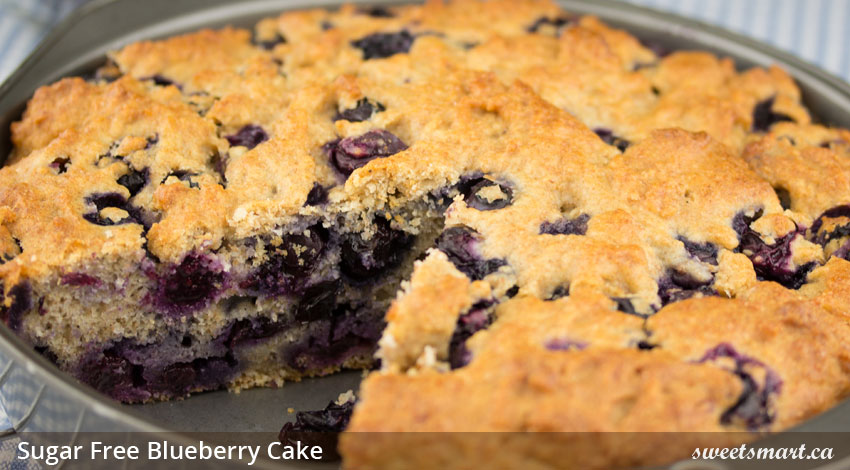 Low Sugar Blueberry Cake